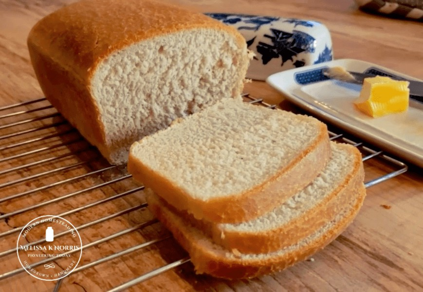 Best Beginner Sourdough Sandwich Bread No Yeast | Kim-RD ...