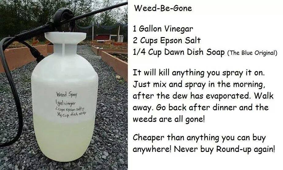 Epsom salt herbicide