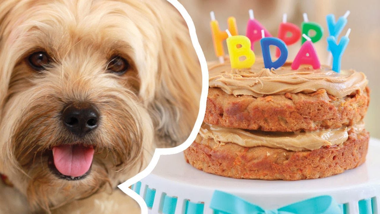 Pleasing Dog Birthday Cake Recipe For Your Furry Friend Pam Copy Me That Birthday Cards Printable Benkemecafe Filternl