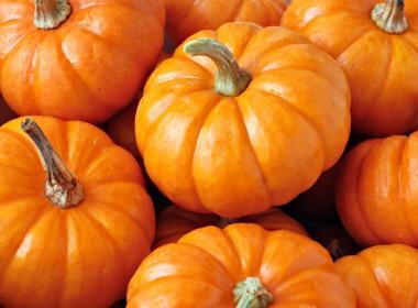 Almond Pumpkin Spice Steamer Recipe • Whipperberry